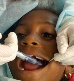 Harvard Dental nina 2